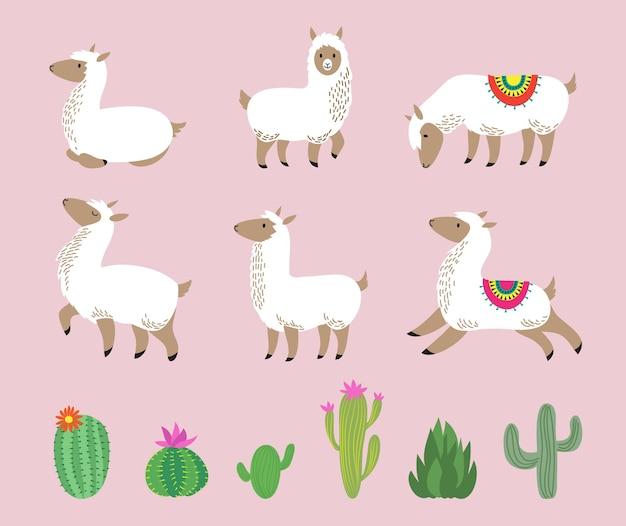 흰색 라마 세트입니다. 귀여운 알파카, 만화 양모 야생 남미 동물. 유치한 라마 캐릭터와 선인장 벡터 삽화. 알파카 아메리카와 녹색 선인장, 그래픽 동물 라마
