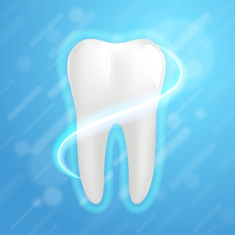 White molar tooth graphic design element for dentist. realistic human tooth.