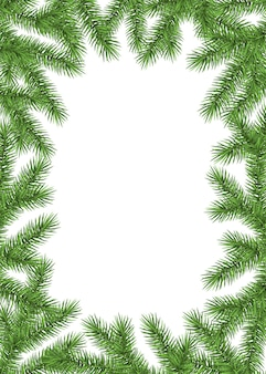 White new year background with spruce branch. green fir frame. realistic christmas tree. vector template  for  cards, banners, flyers,xmas  party posters.