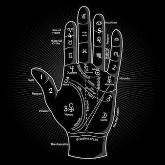 手のひらの神秘的な概念の白い輪郭