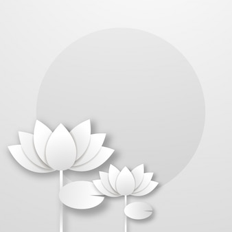 White paper lotus flower on abstract background.