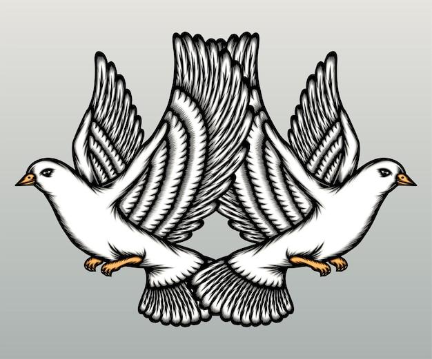Пара белых голубей, изолированные на серый