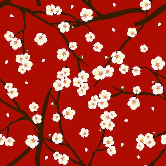White plum blossom flower on red background