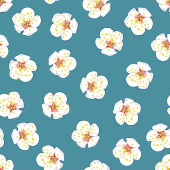 White plum blossom flower seamless on blue background