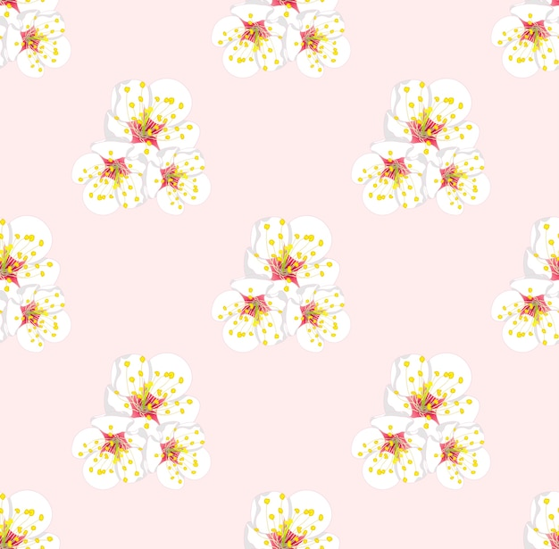 White plum blossom seamless on pink background