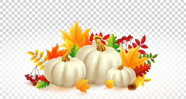 White pumpkins and autumn leaves on transparent background autumn festival invitation fall party tem...