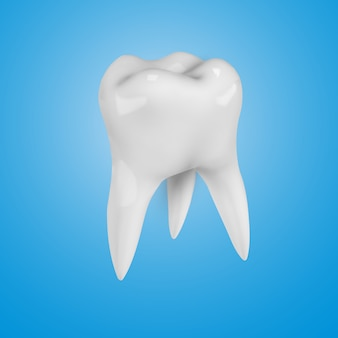 White realistic 3d  tooth
