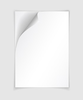 角が丸まった白いリアルな紙のページ。薄い灰色の背景に柔らかい影で折りたたまれた紙シート。