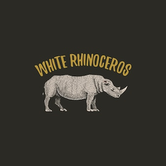 White rhinoceros engraved hand drawn in old sketch style, vintage animals logo