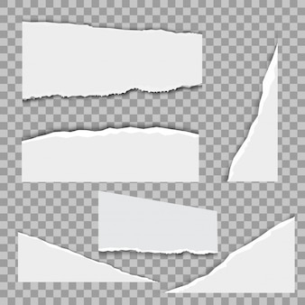 White ripped notebook paper vector