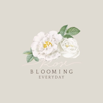 White rose blooming card design