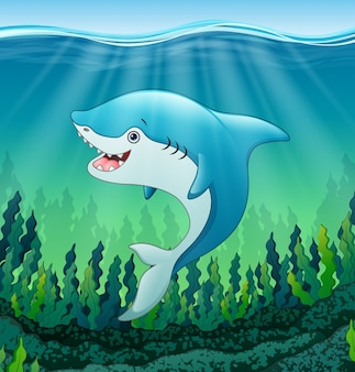 White shark cartoon underwater