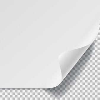 White sheet of paper with curved corner and with shadow