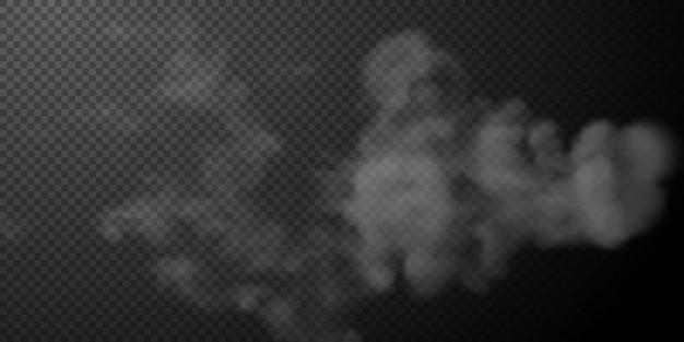 투명 검은 배경 png 증기 폭발 특수 효과에 고립 된 흰 연기 퍼프
