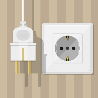 White socket and plug