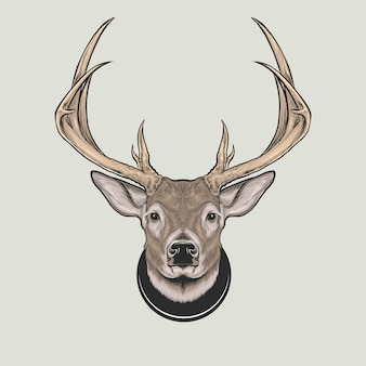 White tail deer head antler hand drawing vector illustration