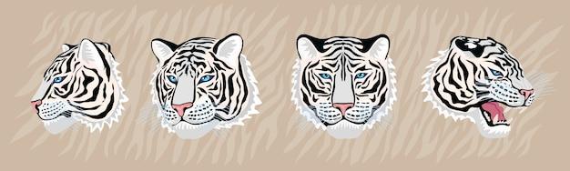 Набор головы белого тигра рисованной иллюстрации