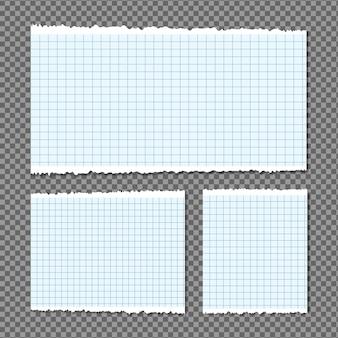 흰색 찢어진 줄무늬, 종이 다른 스크랩 세트, 메모장, 텍스트 또는 메시지에 대한 메모가 붙어 있습니다.