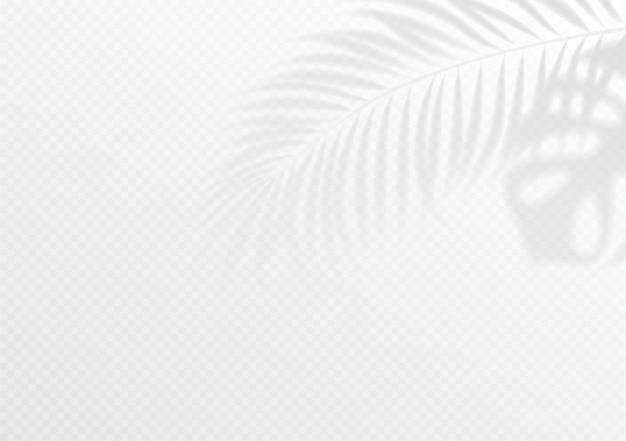 White tropical wallpaper