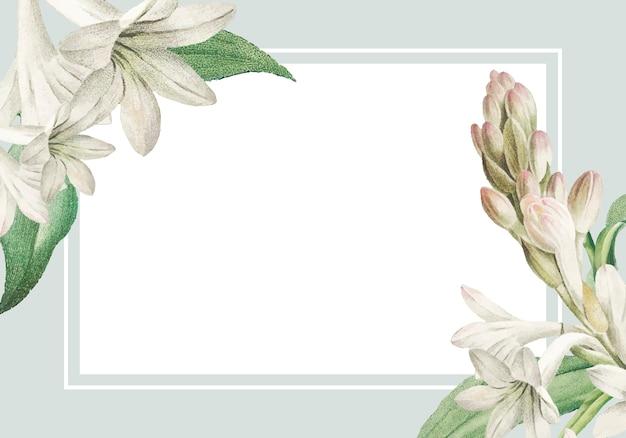 White tuberose framed card