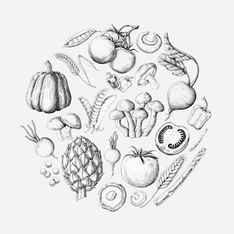White vegetable design collection