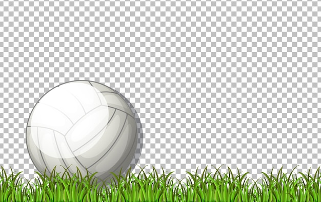 투명 한 배경에 흰색 배구 공과 잔디