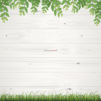 White wood texture background with framing of green leaves. vector illustration.