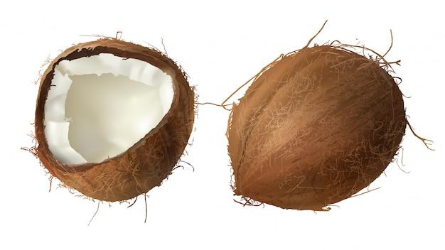 전체 및 절반 깨진 코코넛