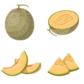 Целая и нарезанная дыня. набор фруктов в мультяшном стиле, изолированные на белом фоне.