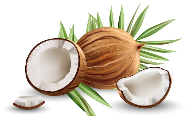 Whole and cracked open coconuts with monstera leaves. realistic.