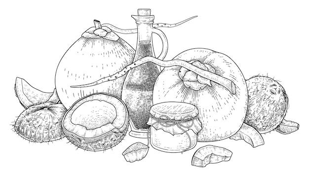 ココナッツ手描きベクトルレトロイラストの全体の半分の殻の肉と油