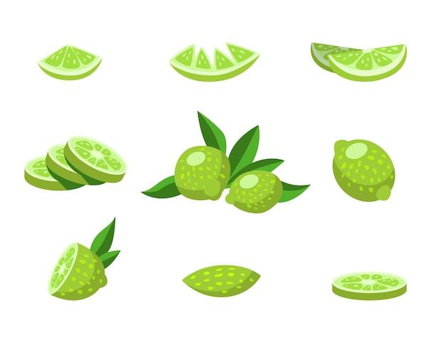 Whole and halved lime cartoon illustration set