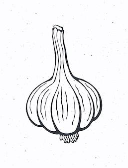 Целая головка чеснока здоровая вегетарианская пища приправа для овощного салата векторная иллюстрация