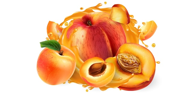 Whole and sliced peaches and apricots in a juice splash.
