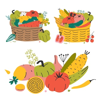 Wicker basket with various vegetables, autumn harvest. colorful hand drawn vector illustration