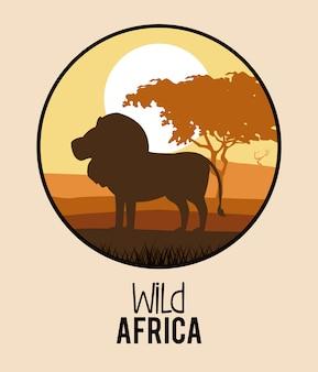Wild africa animals