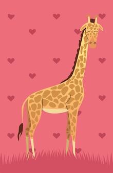 Дикий африканский жираф животное природа значок