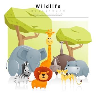 野生動物の背景