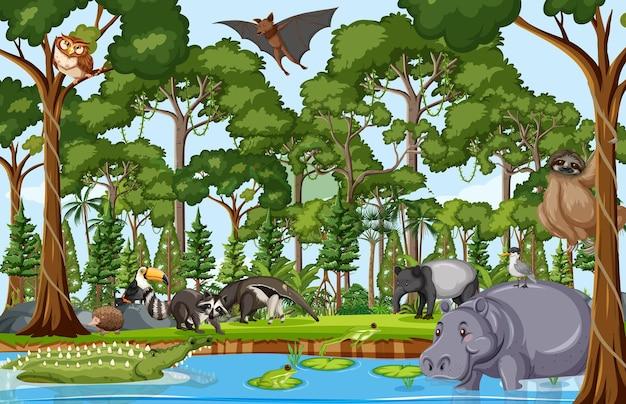 숲 현장에서 야생 동물 만화 캐릭터
