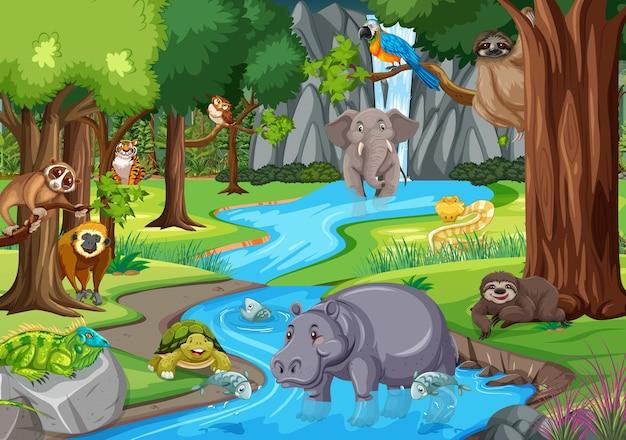 ジャングルシーンの野生動物