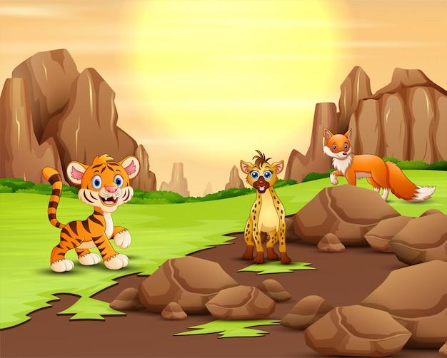 햇빛에서 자연의 야생 동물