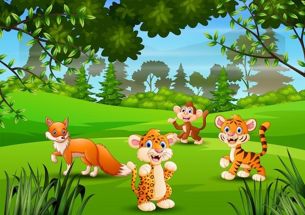 ジャングルで遊ぶ野生動物