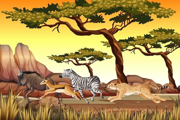 自然の中で動いている野生動物