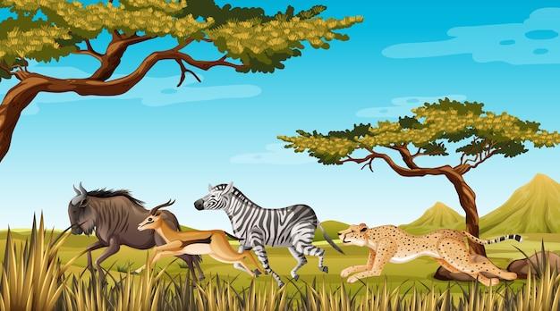 自然の中を走る野生動物