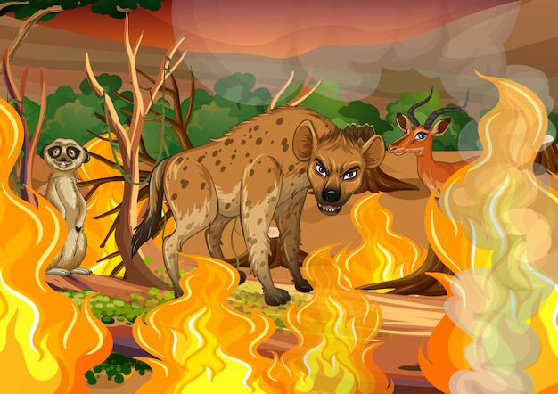 Wild animal in wildfire forest