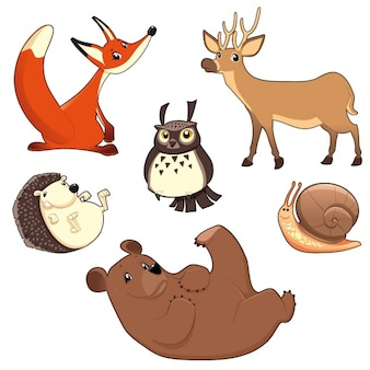 Wild animals collection