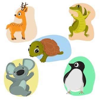 야생 동물 모음