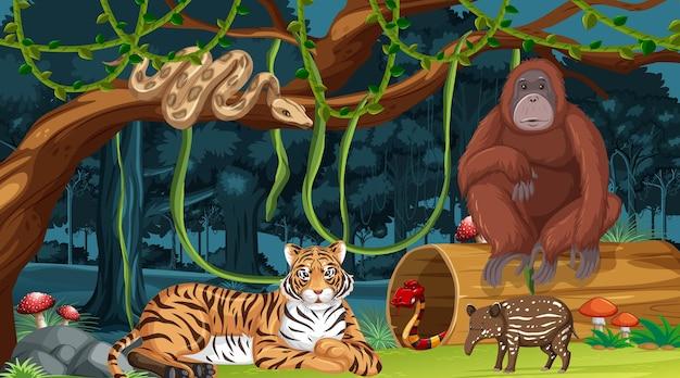 Wild animals in forest landscape background