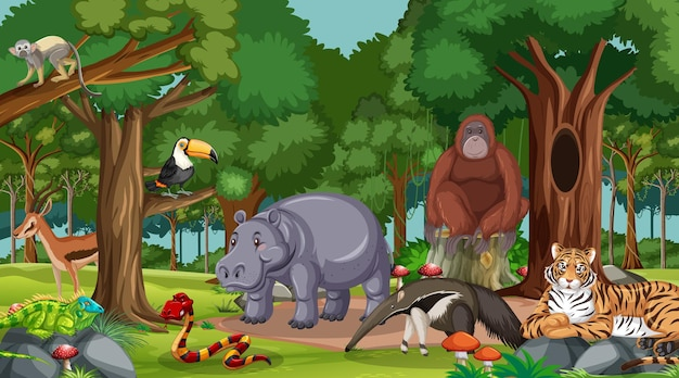 Wild animals in forest or rainforest scene with many trees