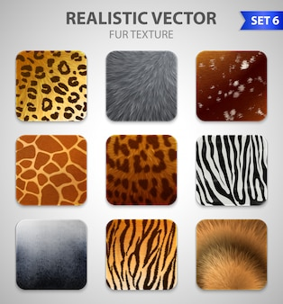 Wild animals fur texture set